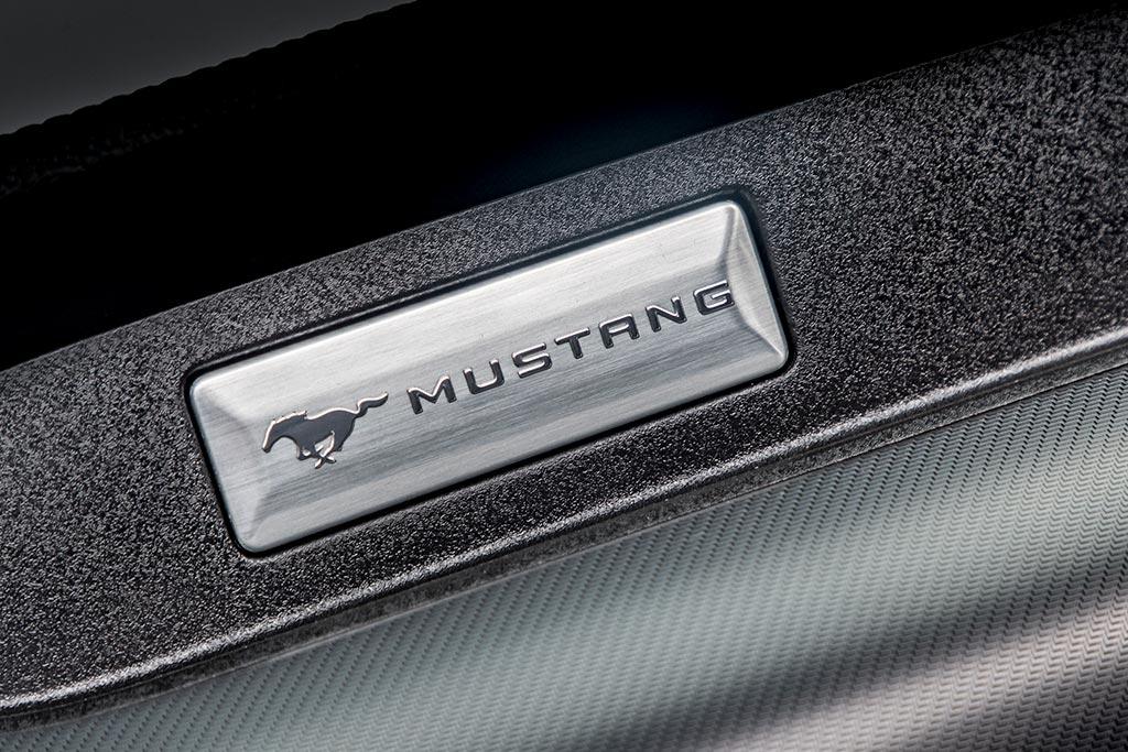 Ford Mustang GT500 logo