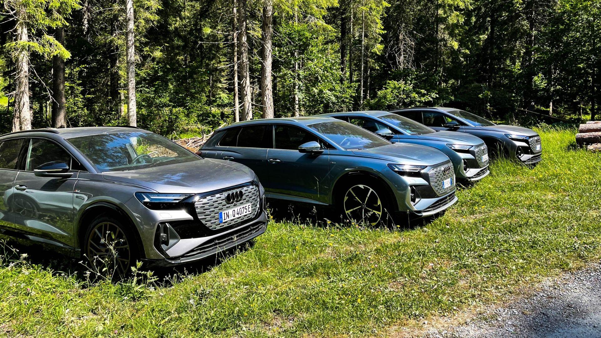 Audi-Q4-e-tron-bosco