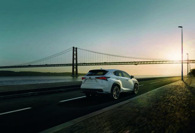 Suv ibrido Lexus NX Sport