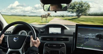 Volvo Animal Detection