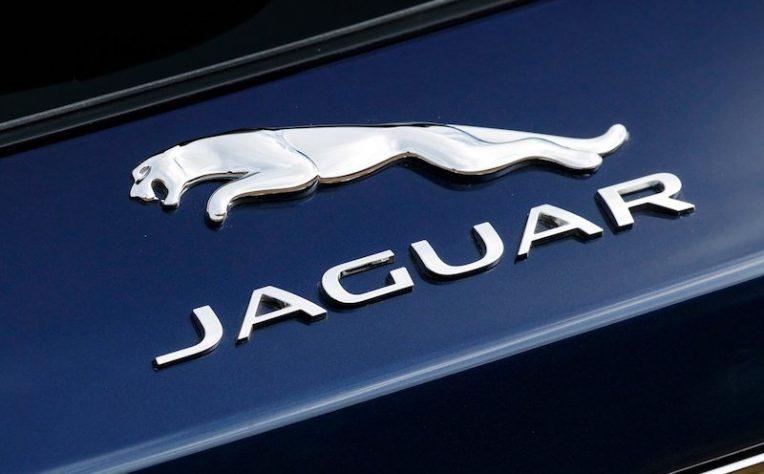 Gamma Jaguar 2019