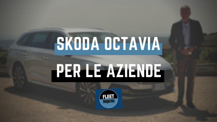 koda Octavia - Cestaro - Cover